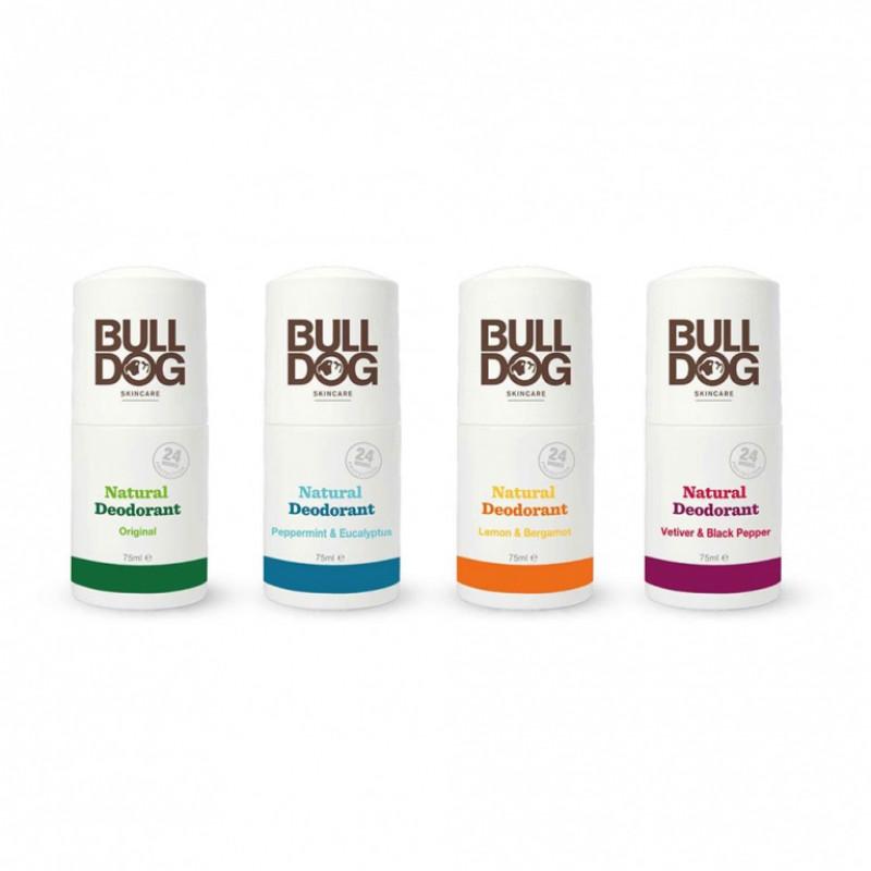 Lăn khử mùi Bulldog Natural Deodorant (tặng lược + dầu gội Aurane 40ml)